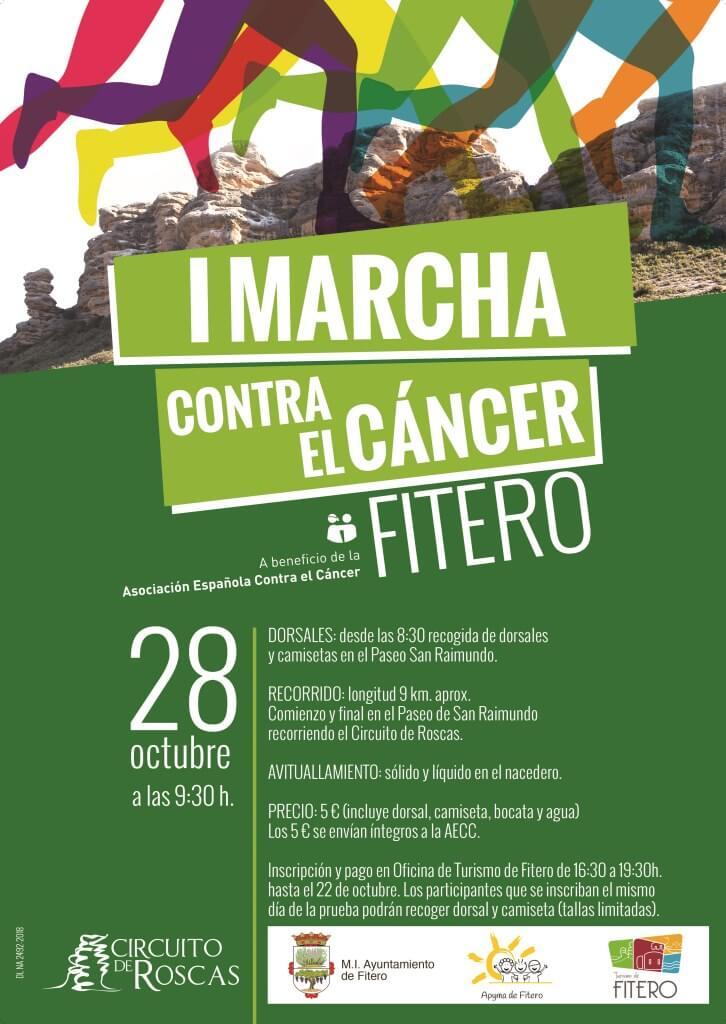 I Marcha contra el Cáncer, Fitero