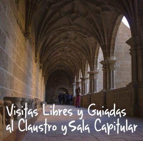 VisitasLibres-01-488x483